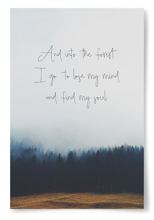 """Poster """"And into the forest I go..."""""""
