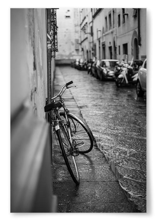 Poster Cykel Svartvit