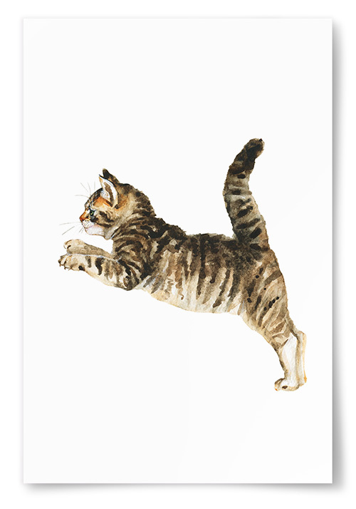 Poster Katt Målning No.2