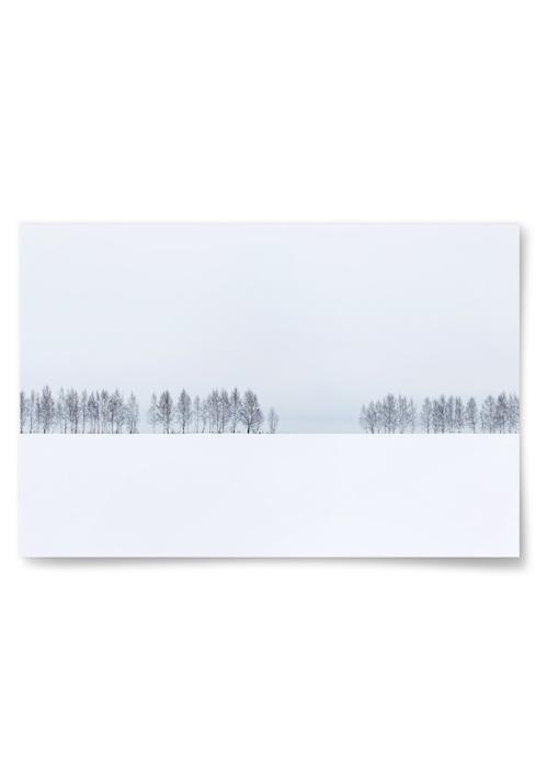 Poster Landskap Vinter No2